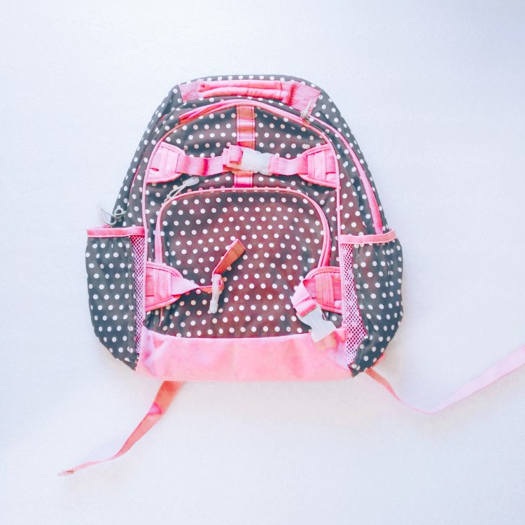 Pink dot printed polyester kids backpack-RB 797